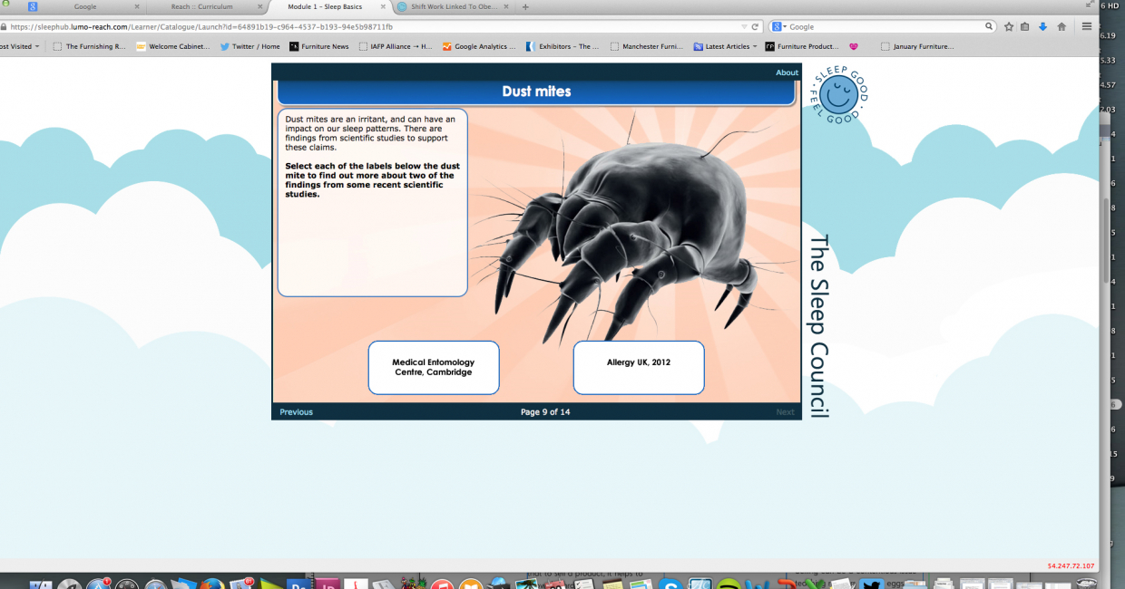 Useful statistics help put the discomfort caused by dust mites into context