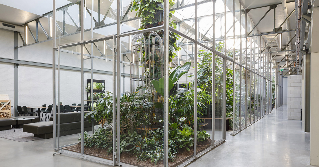 Greenhouses created by Space Encounters within Joolz' headquarters in Amsterdam help staff get closer to nature