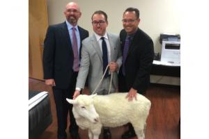 Harrison Spinks' Spink & Edgar bed brand arrives in the US