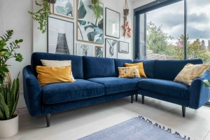 Robert Bridgman's sofa sector disruptor