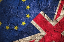 If you could change anything about the Brexit process, what would it be?